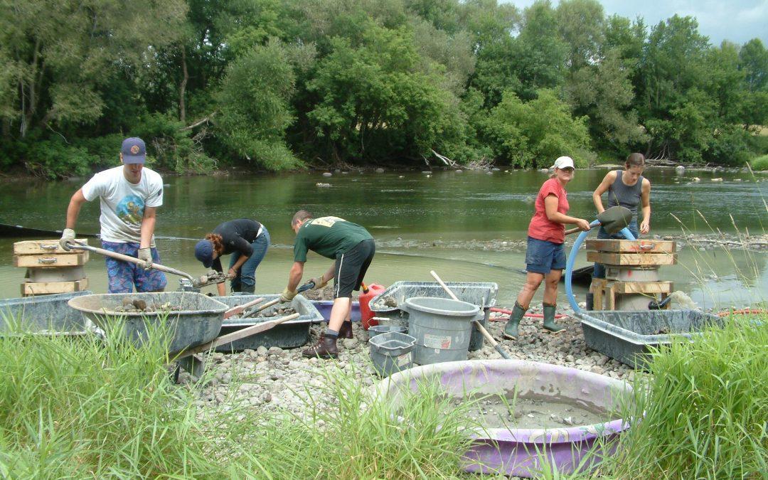 Restauration de la frayère traditionnelle d'esturgeon jaune de la rivière Ouareau (2005-2006)