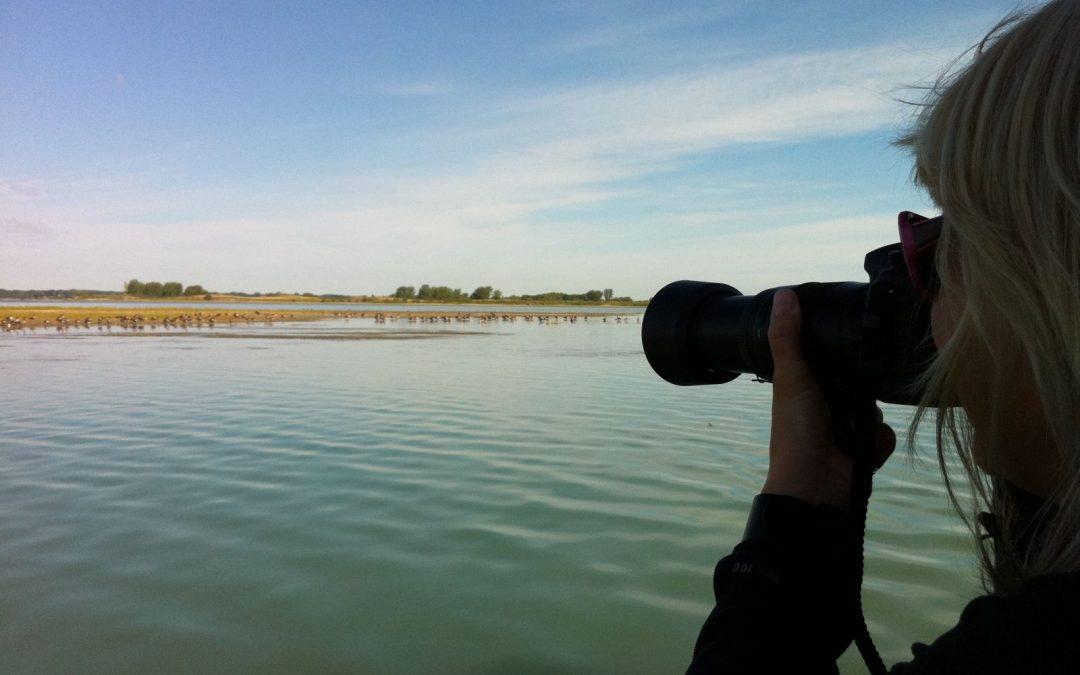 Projet de navette fluviale entre les villes de Contrecœur et de Lavaltrie