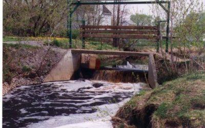 La gestion intégrée des barrages privés de la rivière Saint-Jean pour la restauration de la diversité biologique (2005)