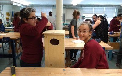 Aménagement pour la faune aviaire en milieu agricole: installation de nichoirs à l'île Bouchard